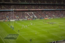 Olbg betting rugby sports betting reviews