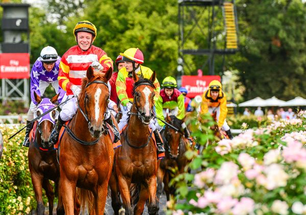 Bet on the melbourne cup online the noite mauro bettingadvice