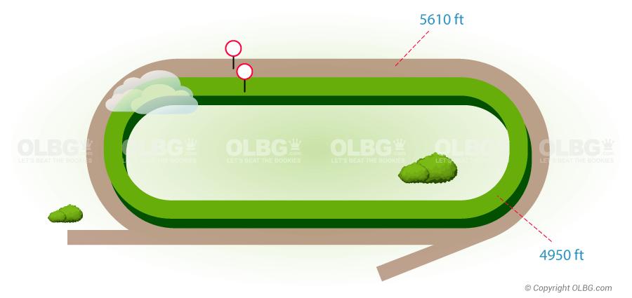 golf betting tips olbg