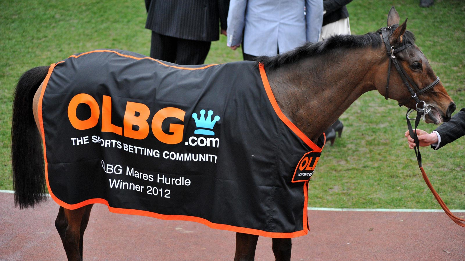 olbg mares hurdle betting calculator