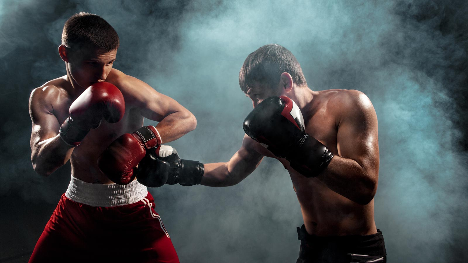 Boxing betting forums 100 percent winners sports betting software